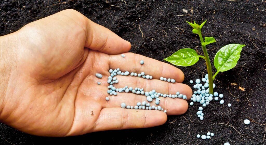 Garden ammonia fertilizers