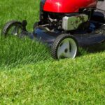 Mowing lawn at day